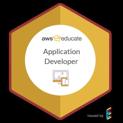 AWS Application Developer
