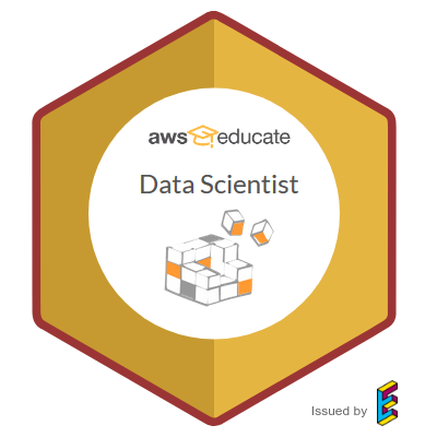 AWS Data Scientist