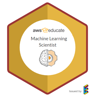AWS Machine Learning Scientist