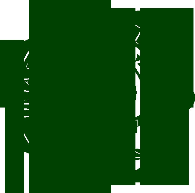 De La Salle Araneta University (DLSAU) Logo