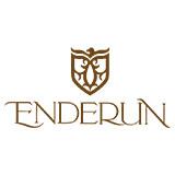 Enderun Colleges Logo
